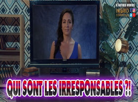 Ingrid Courrèges - Qui sont les irresponsables ?!