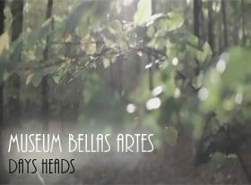 Museum Bellas Artes - Days Head