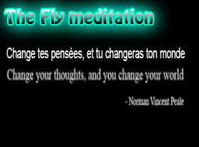 The Fly Meditation