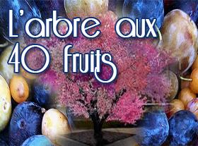 L arbre aux 40 fruits
