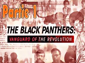 Black Panthers - Partie 1/2