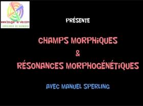 Champs morphiques et resonance morphique