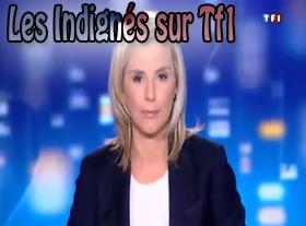 Les Indignés sur TF1