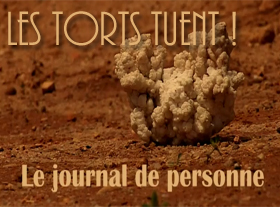 Le Journal de Perconne - Les torts tuent