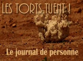 Le Journal de Perconne - Les torts tuent