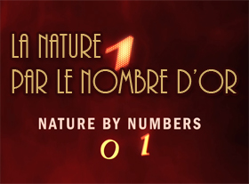 Nature By Numbers - La Nature par le Nombre d or