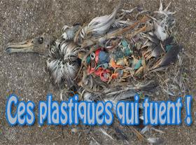 Ces plastiques qui tuent !