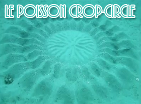 Le Poisson Crop Circle
