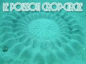 Le Poisson Crop Circle