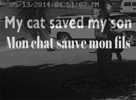 Mon chat sauve la vie à mon fils !