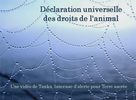 Déclaration Universelle des Droits de l Animal